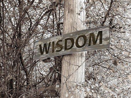 la-sabiduria-llega-tarde